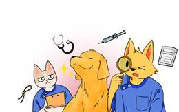 개포트 : 동물병원 이야기
